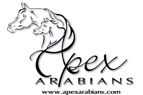 Apex Arabians Stables
