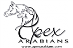 Apex Arabians / Apex Stables